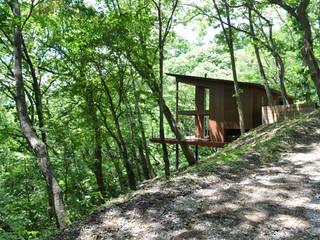 大きな栗の木の下の家 鎌田建築設計室 ラスティックな 家