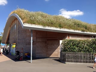 scandinavian  by BBS Green Roofing, Scandinavian