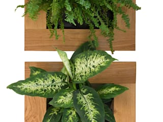 Small Oak - Vertical Garden Living Interiors UK 藝術品其他藝術物件