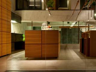 Minimalistische huizen van TETRAO Minimalistisch
