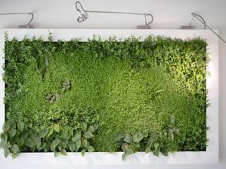 Quadri vegetali, idee green per i regali natalizi di Sundar Italia Moderno