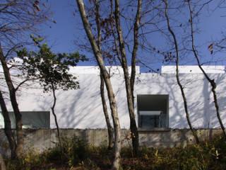 House in Ise: Takashi Yamaguchi & associatesが手掛けたです。