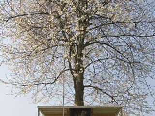 Boomhut en kersenboom:   door Atelier Dutch