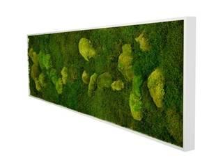 minimalist  by Greenbop, Minimalist