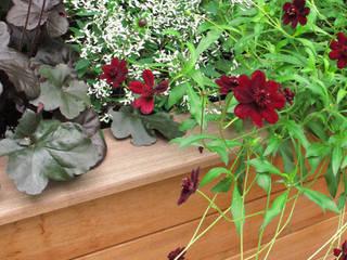 contemporary wooden planter: modern Garden by Fenton Roberts Garden Design