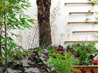 Marylebone Courtyard Fenton Roberts Garden Design Сад