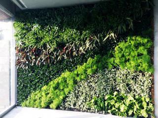 Vertical Gardens od Ece Botanik