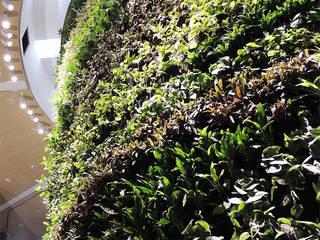 Vertical Gardens von Ece Botanik