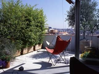 สแกนดิเนเวียน  โดย Beriot, Bernardini arquitectos, สแกนดิเนเวียน