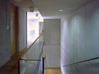 Bürogebäude für die Wildbach- und Lawinenverbauung, Wr. Neustadt-A:   von K n a u e r  A r c h i t e k t e n, ZT