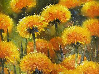 'Dandelions' by Vladimir Piven at Riverside Art and Glass.:   by Riverside Art and Glass, Contemporary Gallery