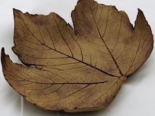 Small Leaf by Eve Mahoney:   by Riverside Art and Glass, Contemporary Gallery