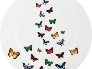 Lepidoptera por The New English Clássico