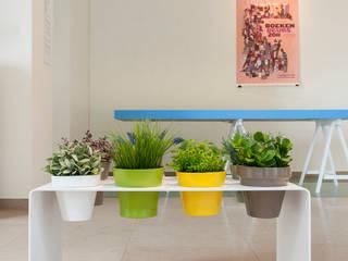 homify 陽台、門廊與露臺 植物與花