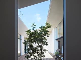 House in Hakonomori Vườn phong cách hiện đại bởi 石井秀樹建築設計事務所 Hiện đại
