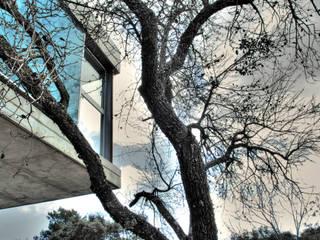 Casa Las Hormigas: Casas de estilo  de Espegel-Fisac architects