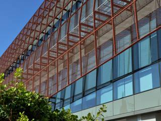 MTF Proje – Çukurova Belediyesi ve Kültür Merkezi: modern tarz , Modern