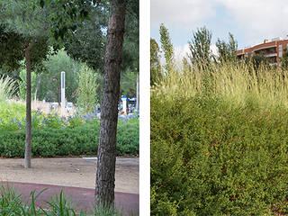 Parc Gandhi Green Effect Espacios