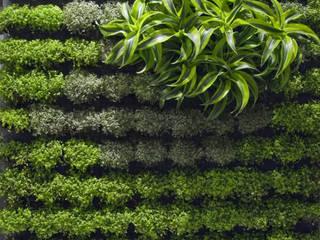 Офисные помещения и магазины в . Автор – Dotto Francesco consulting Green