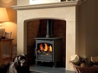 ACR Wood Burning / Multi Fuel Stoves: modern  by Direct Stoves, Modern