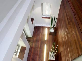 Proyecto Patio de Luces - Oficinas Unicaja Barcelona Oficinas y tiendas de estilo minimalista de Paisajismo Digital Minimalista