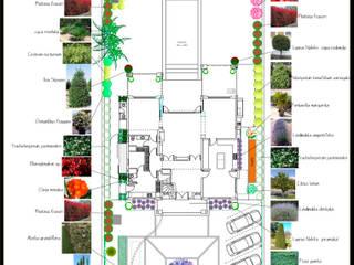 Paisajismo Digital Сад