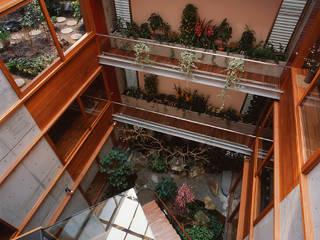 アトリウムの家: 白井克典設計事務所が手掛けた家です。