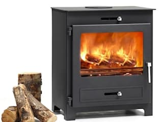 Hillandale Wood Burning / Multi Fuel Stoves: modern  by Direct Stoves, Modern