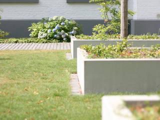 """Wohnanlage """"Alte Schule"""", Hochbeete für Baum-Hasel aus feinem Sichbeton: klassischer Garten von Grünplanungsbüro Jörg baumann"""