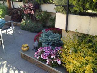 Diseño de Terrazas y Áticos Balcones y terrazas de estilo rústico de Heliconia Rústico