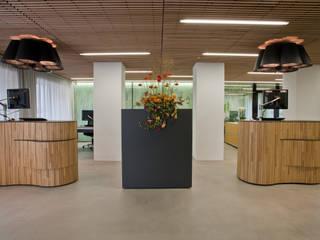 Allgemeinbeleuchtung: modern  von KANDEM Leuchten GmbH,Modern