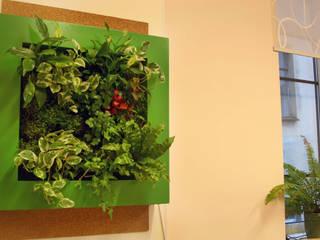 Фитокартина в школьном классе: Рабочие кабинеты в . Автор – Зеленый мир, Классический
