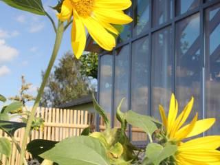 Wähner GmbH Mediterranean style conservatory
