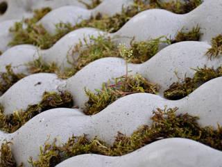 Dalles végétales:  de style  par Chauvin Amandine