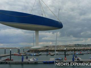 Neo495 dans les airs. par CN Alain INZELRAC - Coques en Stock Moderne
