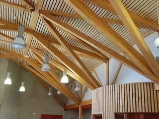 Collège à Saint Martin en Haut Maisons classiques par archipente Classique