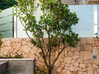 Сады в . Автор – David Jiménez. Arquitectura y paisaje, Классический