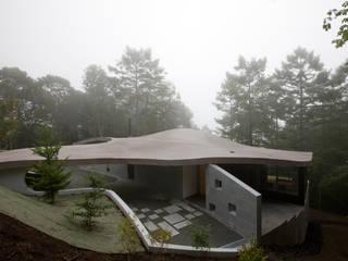 山中に浮かぶ曲面屋根: PODAが手掛けた別荘です。