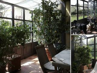 Conservatory by Studio Maggiore Architettura, Country