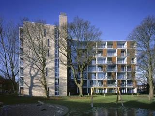 Ansicht Ost:  Häuser von Schaub+Partner Architekten