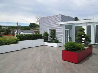 Varandas, alpendres e terraços modernos por Midori srl Moderno