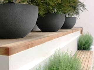 City retreat Rae Wilkinson Design Ltd Modern style gardens