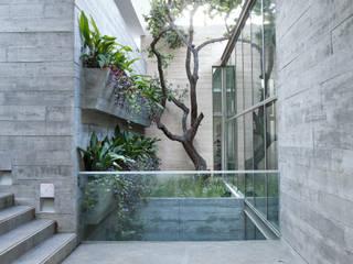 Jardins modernos por homify Moderno