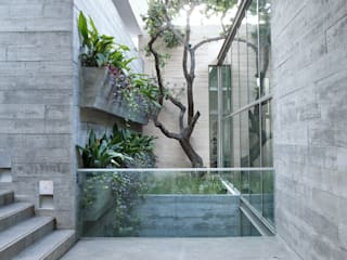 CASA SAN ÁNGEL: Jardines de estilo moderno por Landa Suberville