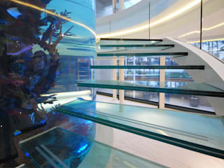 Helical glass staircase around giant fish tank Diapo 現代風玄關、走廊與階梯