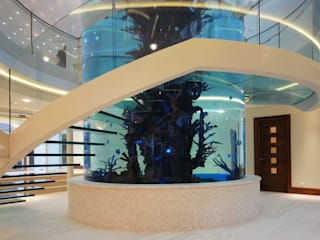 Helical glass staircase around giant fish tank Diapo Koridor & Tangga Modern
