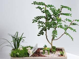 MyHobbyMarket & Peri Bahçem – Bahçede Keyif: minimalist tarz , Minimalist