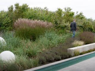 Dune garden Katwijk Holland Moderner Garten von Andrew van Egmond (ontwerp van tuin en landschap) Modern