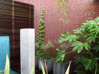 Patiotuin zuid holland Moderne tuinen van Andrew van Egmond (ontwerp van tuin en landschap) Modern