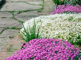 Pflanzenfreude.de:  tarz Bahçe